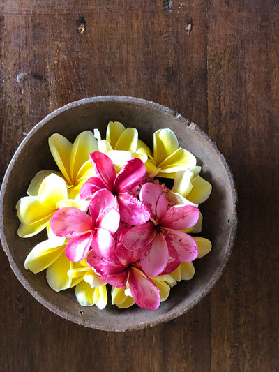 Bali Travel Traveling Beauty In Nature Close-up Directly Above Flower Flower Head Flowering Plant Food Food And Drink Frangipani Freshness Healthy Eating High Angle View Indoors  No People Petal Plant Table Vulnerability  Wellbeing Wood - Material Yellow