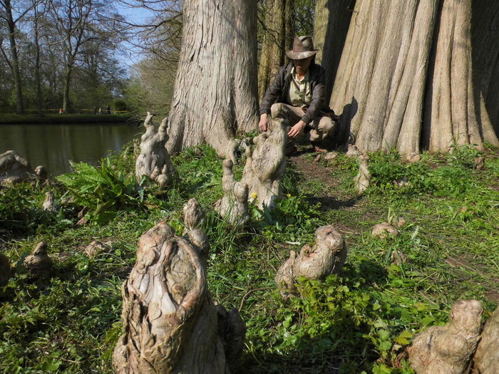 Wood - Material Wonderworld Getting Inspired Indiana Jones Tree Water Sunlight Growing Wooden