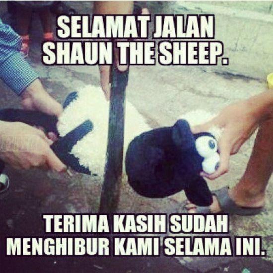 Happy Ied Mubarak Buat Yang Merayakanya Hari Ini Meskipun gua besok sieh ;) Terimakasih Shaun The Sheep :* Iedladha Kurban Harirayahaji Iduladha Kambing Sapi Sate Daging Islam Moslem Ukhuwah Loveislam Funnypics Shaunthesheep Lucu INDONESIA Brothermoslem