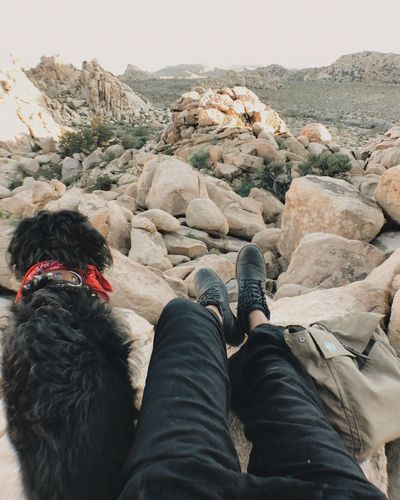 Low section of woman with dog on rock