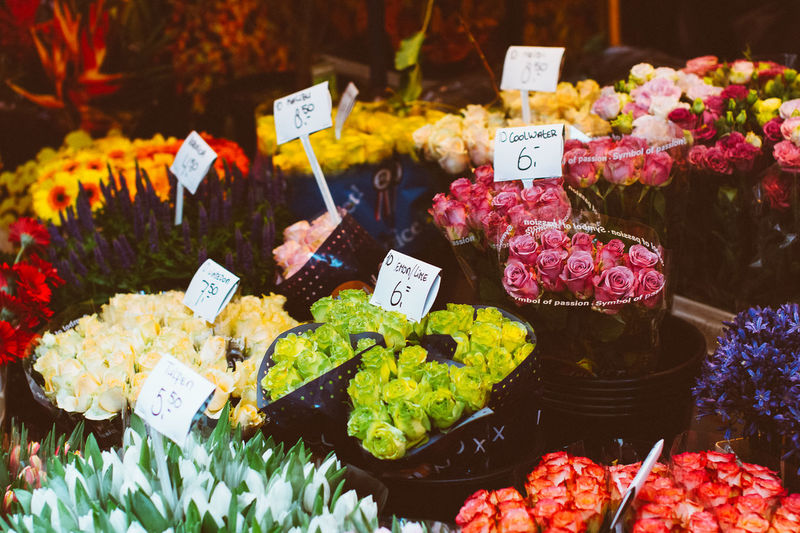High angle view of flowers for sale