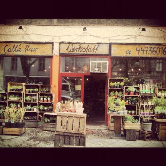 blumenladen, pflanzen, blumen, spring, at calla fleur, Berlin, shop, Spring Blumen Pflanzen Blumenladen