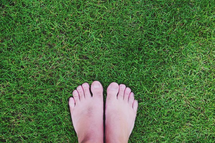 men's bare feet on green grass Nature Real People Women Field Grass Plant Land Nail Lifestyles Green Color Body Part Toenail High Angle View One Person Directly Above Human Foot Human Leg Low Section Human Body Part Personal Perspective Human Limb