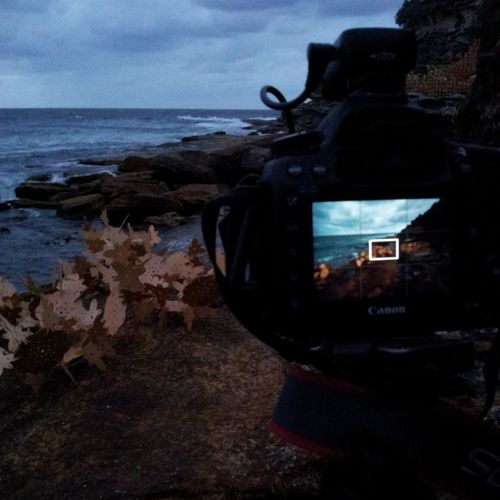Sculptures by the Sea at dawn Sydney Sculpturesbythesea2013 Sculpture Ocean