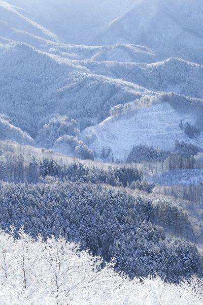 Japan Nature Snow Cold Temperature Winter Beauty In Nature No People Landscape