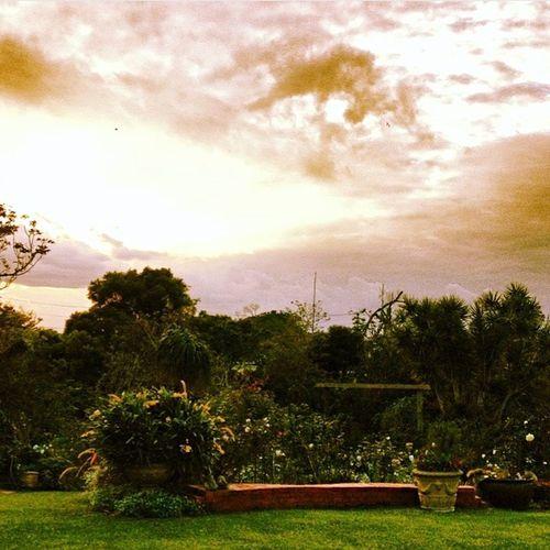 Garden Garden Photography Cafe Sera Sunset Sunsetlover Beautifulgarden Healing Healing Place