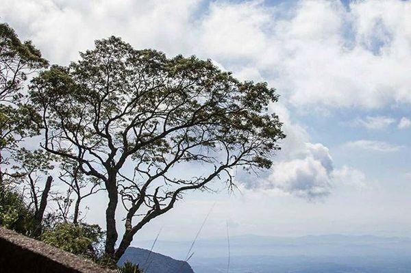 Serra do Rio do Rastro Euamosc