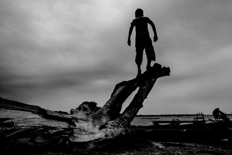 Rear view of man standing on driftwood at beach against sky