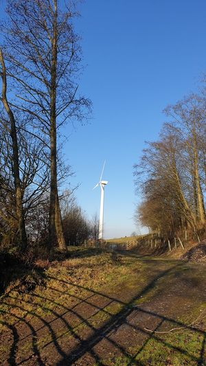 windmill in