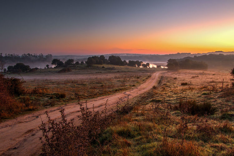 Alentejo Colors Countryside Dam Fog Foggy Morning Nature Portugal Road Sunrise Tourism