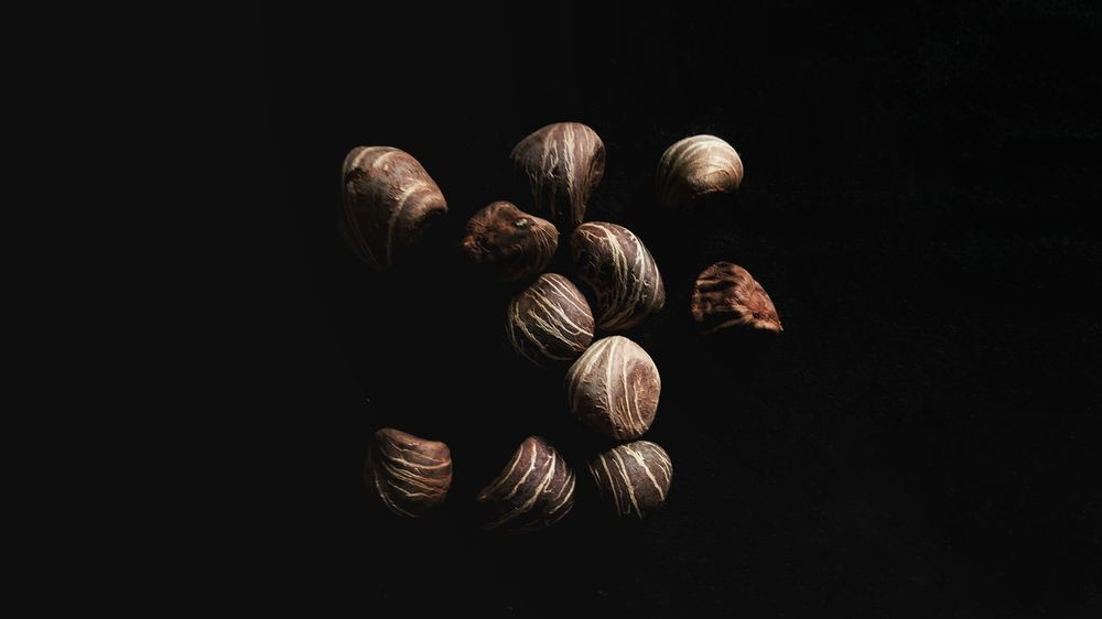Chestnut • Sony Xperia Xz Takenwithxperia Shotbyxperia Itsme_itsXperia Mobilephotography Manual Processed Snapseed Snapseed Close Up Clouse-up Nut Chestnut Black Background Black Cloth Art Contrast Unpolished