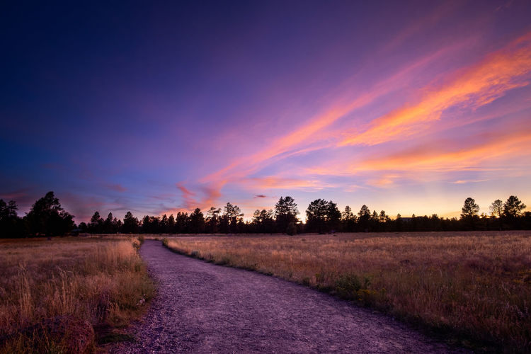 Dirt road amidst trees on field against romantic sky at sunset