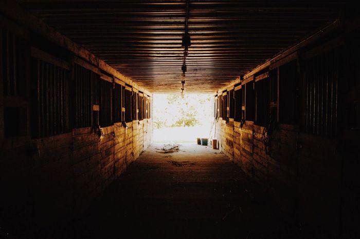 Indoors  Illuminated Day Wood - Material Stable Horsestable Lightattheendofthetunnel Sunlight Built Structure Barn Horse Barn