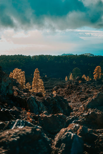Panoramic view of rock formation on landscape against sky