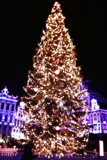 The Most Beautiful Christmas Tree Night Illuminated Grandplacebrussels