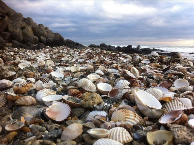 Landscape_Collection Beauty Photo Here Belongs To Me Mediterranean  France Beach Rocks And Water Beachphotography Landscape Mediterranean Sea Landscape_photography Sea Beautiful Day Beautiful Water Sea And Sky Rêve Mer Nature Nature_collection Nature Photography