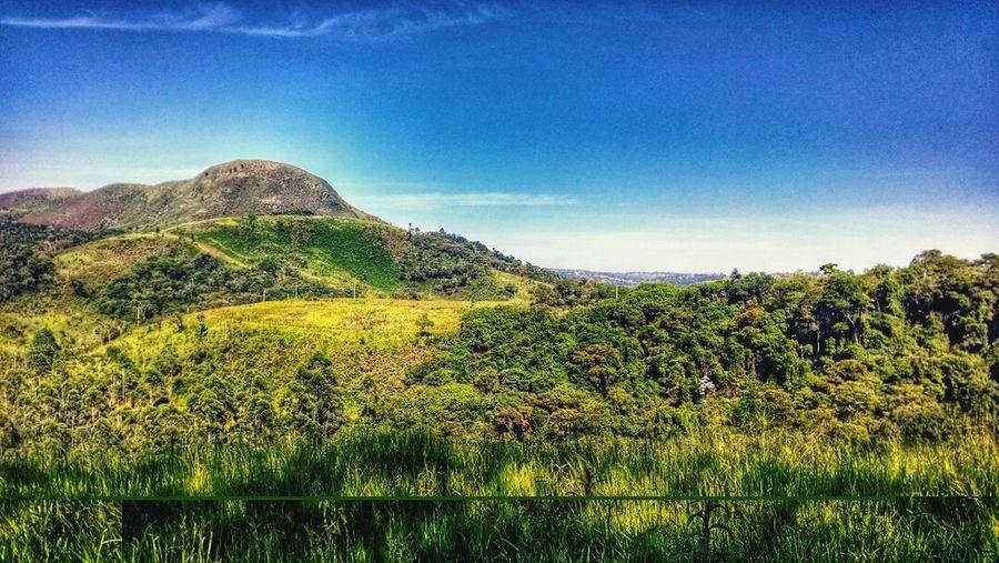 The Environmentalist – 2014 EyeEm Awards Travelling Saoroque mirantedosaboo