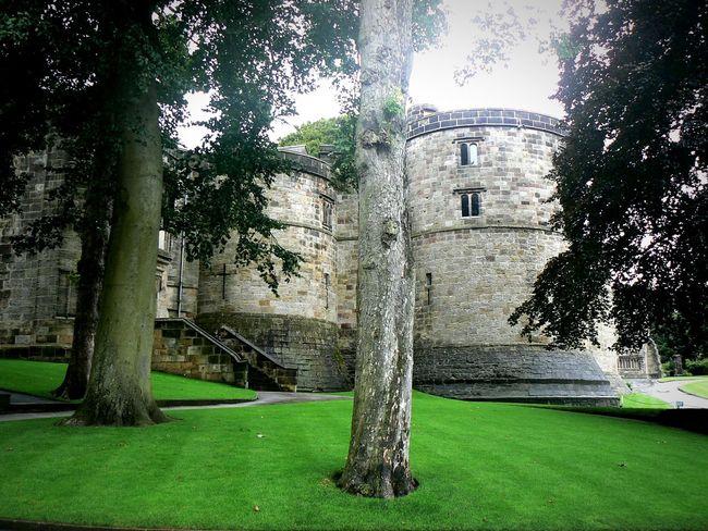 Castle Trees Historical Building Skipton Castle at Skipton Yorkshire