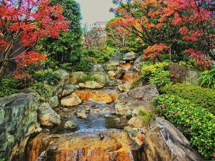 Tokyo near Asakusa temple Travelling Walking Around Quality Time Popart Kunst Hi! The Week Of Eyeem