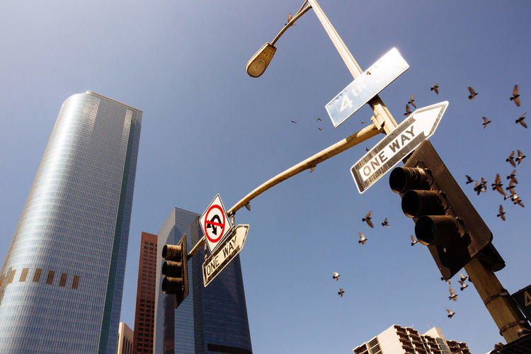 City Life Clear Sky Doves Travel Photography Architecture Birds Building City Clear Sky Day Flying Birds Low Angle View Nature No People Outdoors Road Sign Sign Sky Skyscraper Streetphotography Swarm Of Birds Tower Traffic Lights Traffic Sign Travel Destinations