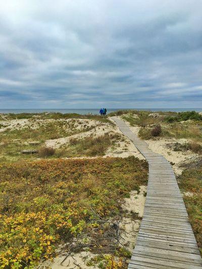 Baltics2k16 Kurische Nehrung Beach Track Wooden