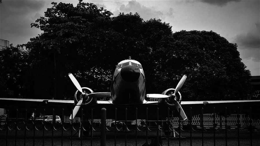 Damn I want to Fly ! Airplane