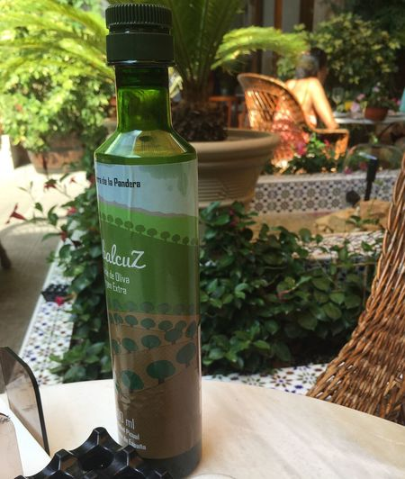 Olive Oil at its best, in Spain Olive Oil EyeEm Selects Plant Bottle Nature Container Green Color Communication Drink Food And Drink Day No People Text Table Refreshment Outdoors Growth Food Freshness Glass Sunlight Leaf