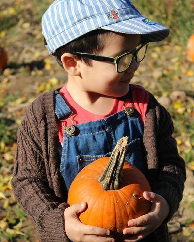 Portrait Child Children Only Outdoors People Fall Newengland Pumpkin Pumpkinpicking