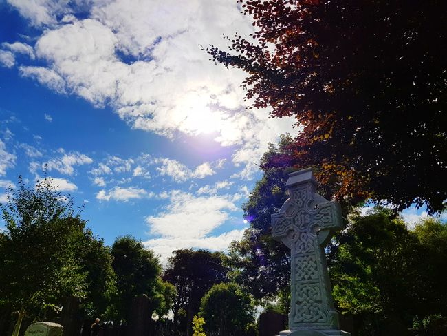 Celtic Cross Tree Low Angle View Cloud - Sky Outdoors Sky No People Day Growth Nature Beauty In Nature Cementery