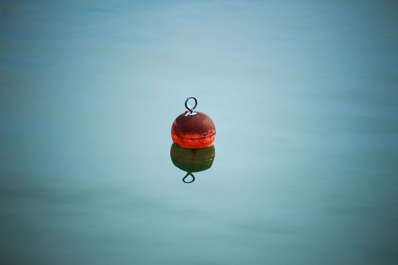 Blue Bodensee Buoy Buoy On The Water Nature Outdoors Red Water