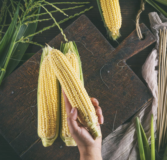 Agriculture Corn Corn - Crop Corn On The Cob Crop  Food Food And Drink Freshness Hand Healthy Eating Holding Human Body Part Human Hand One Person Plant Real People Sweetcorn Vegetable Vegetarian Food Wellbeing