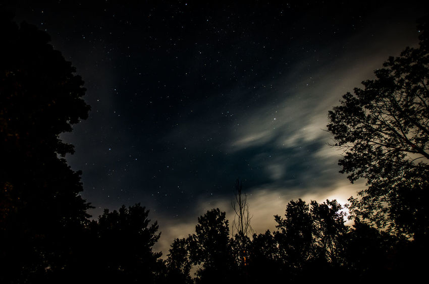 Cloud Galaxy Moon Trees Astronomy No People Outdoors Sky Space Star - Space Starry Stars