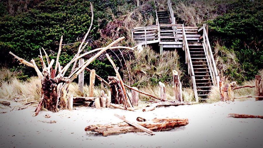 Lincoln City, Oregon Beach Suing Honeymoon 2016