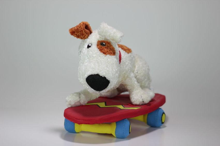 Dog on a Skateboard Stuffed Toy Dog Radical Sport Skateboard Still Life Studio Shot Stuffed Animals Stuffed Toy Teddy Bear Toy Toy Dog Toy Photography