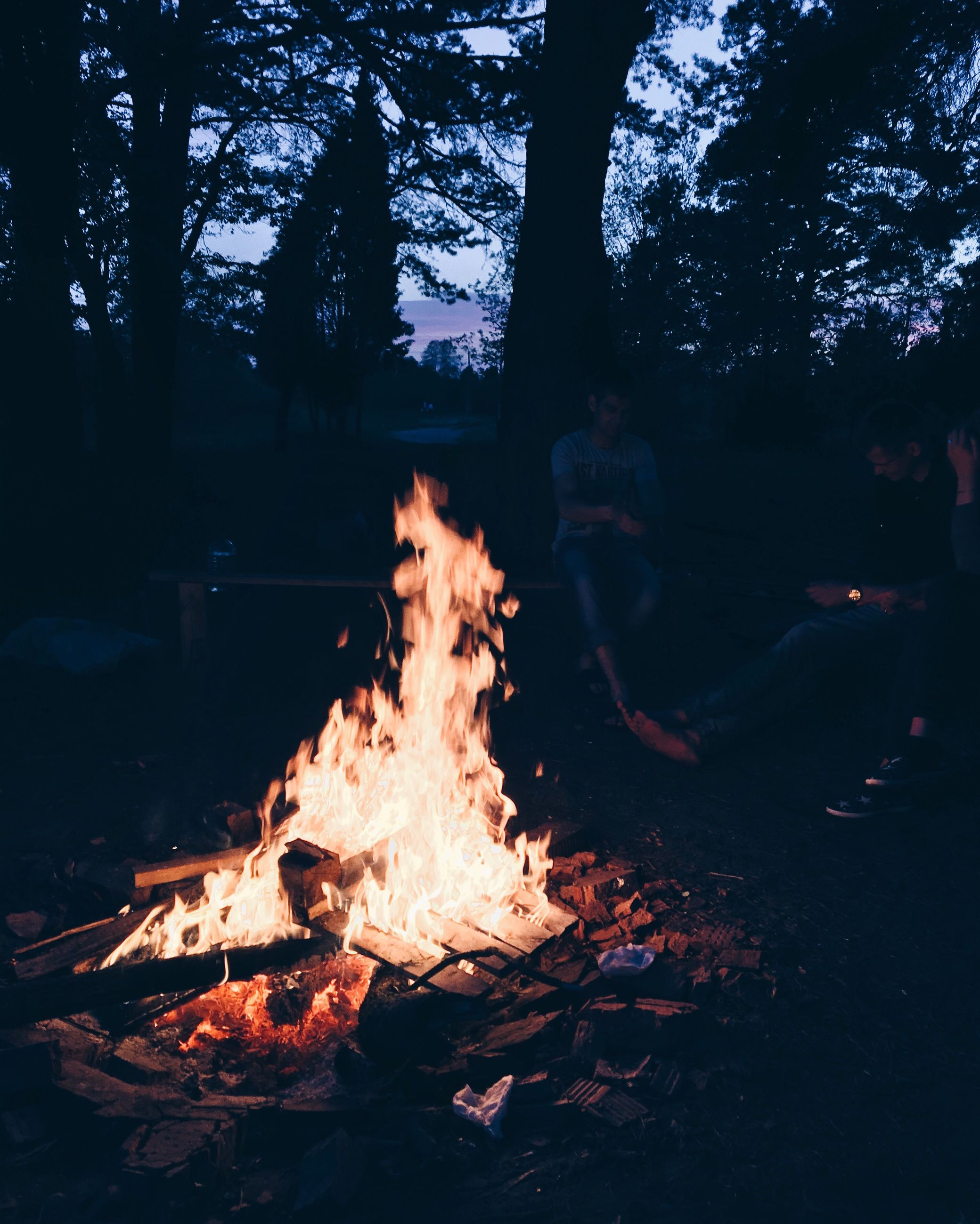 burning, tree, flame, campfire, bonfire, outdoors, night, heat - temperature, real people, nature, forest, men, togetherness, people