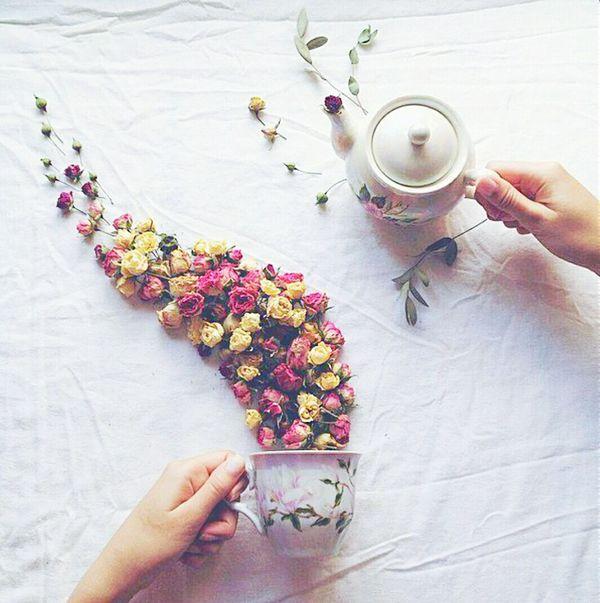 Teapot Shot Tea Of Flowers Beauty In Ordinary Things Beautiful Flowers Beach Photography Cool Pic Like #like4like #tagsforlikes #tflers #liker #likes #l4l #likes4likes #photooftheday #love #likeforlike #likesforlikes #liketea Likeforlike #likemyphoto #qlikemyphotos #like4like #likemypic #likeback #ilikeback #10likes #50likes #100likes #20likes #likere Like My Picture Followme Follow4follow Followshoutoutlikecomment Followforfollow Followback Follow #f4f #followme #TagsForLikes #TFLers #followforfollow #follow4follow #teamfollowback #followher #followbackteam #followh Follow Me I'll Follow Back Followforlike