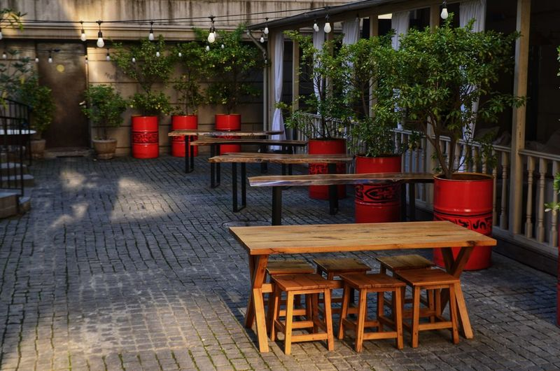 Seat Chair Restaurant Table Food And Drink Plant Absence Potted Plant No People Business Cafe Furniture Architecture Wood - Material Empty Red Day Built Structure Nature Building Exterior Outdoors Flooring Flower Pot Glass