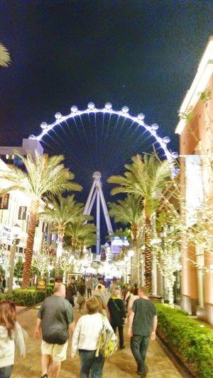 Biggest roller coaster in America Las Vegas Vegas  Fun Ride Vacations City Life Vegastech Vegas Vacation Vegas Skys Vegastouring High Rise Ferris Wheel Big Wheel Palm Tree