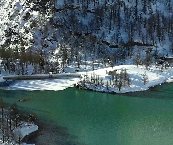 Mountain EyeEm Best Shots EyeEm Gallery Frozen Bernina Winter Landscape Lakes  No People Beauty In Nature Forest Nature Reflection Lake Glacier Lakes  White Lake
