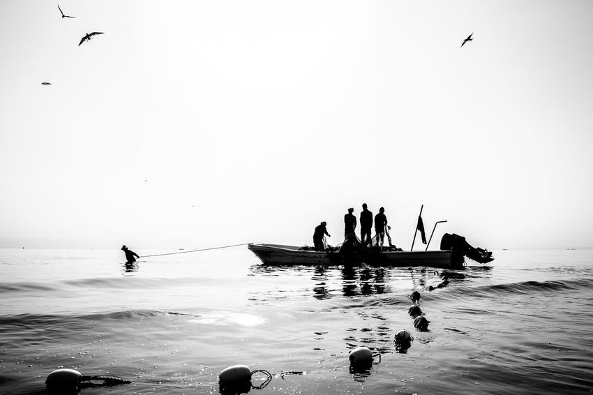 Sea Hunters Black & White Black And White Black And White Photography Blackandwhite Blackandwhite Photography Boat Fisherman Fishermen's Life Hardwork Medium Group Of People Men Nature Nautical Vessel Outdoors Real People Sea Sea Life Silhouette Silhouette Storytelling Street Photography Streetphoto_bw Streetphotography The Street Photographer - 2017 EyeEm Awards Water