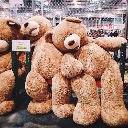 Hug ready! Best store display. Stuffed Animals Shopping Kidatheart
