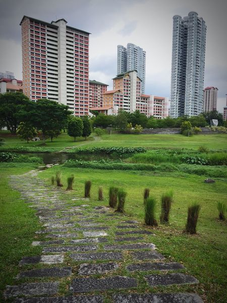 Architecture Skyscraper Building Exterior Built Structure Grass Tree Green Color No People Outdoors Landscape City Day Urban Skyline Nature Sky Bishan Park Greenspace Beauty In Nature Cloudy HDB City Steps Singapore