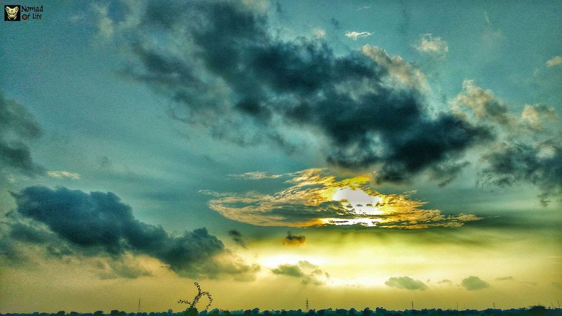 The road is where my heart belongs 🇮🇳 Tree Nature Sky Outdoors Cloud - Sky Beauty In Nature Landscape Tranquil Scene Scenics Rural Scene Tranquility Agriculture No People Day Milky Way Galaxy Motorcycle Photography Highwayphotography Sunset Nature Traveldiary2017 Photography Dramatic Sky Nomad EyeEm Transportation