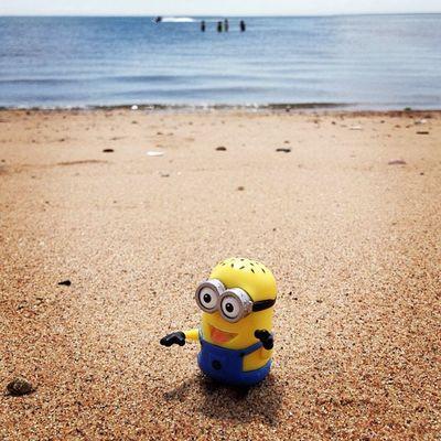 Happy Minion Beach Day! Igersusa Mytravelgram Beach Minion  Igworldclub Ct Miniature Insta_america Iphoneonly Igharjit Iphonesia Westhaven Picoftheday Momentsinthesun Instamood World_shotz Bestoftheday Ig_fotogramers Shotaward Ig_northamerica Hot_shotz Mogcomm Minions Instagood Igersoftheday