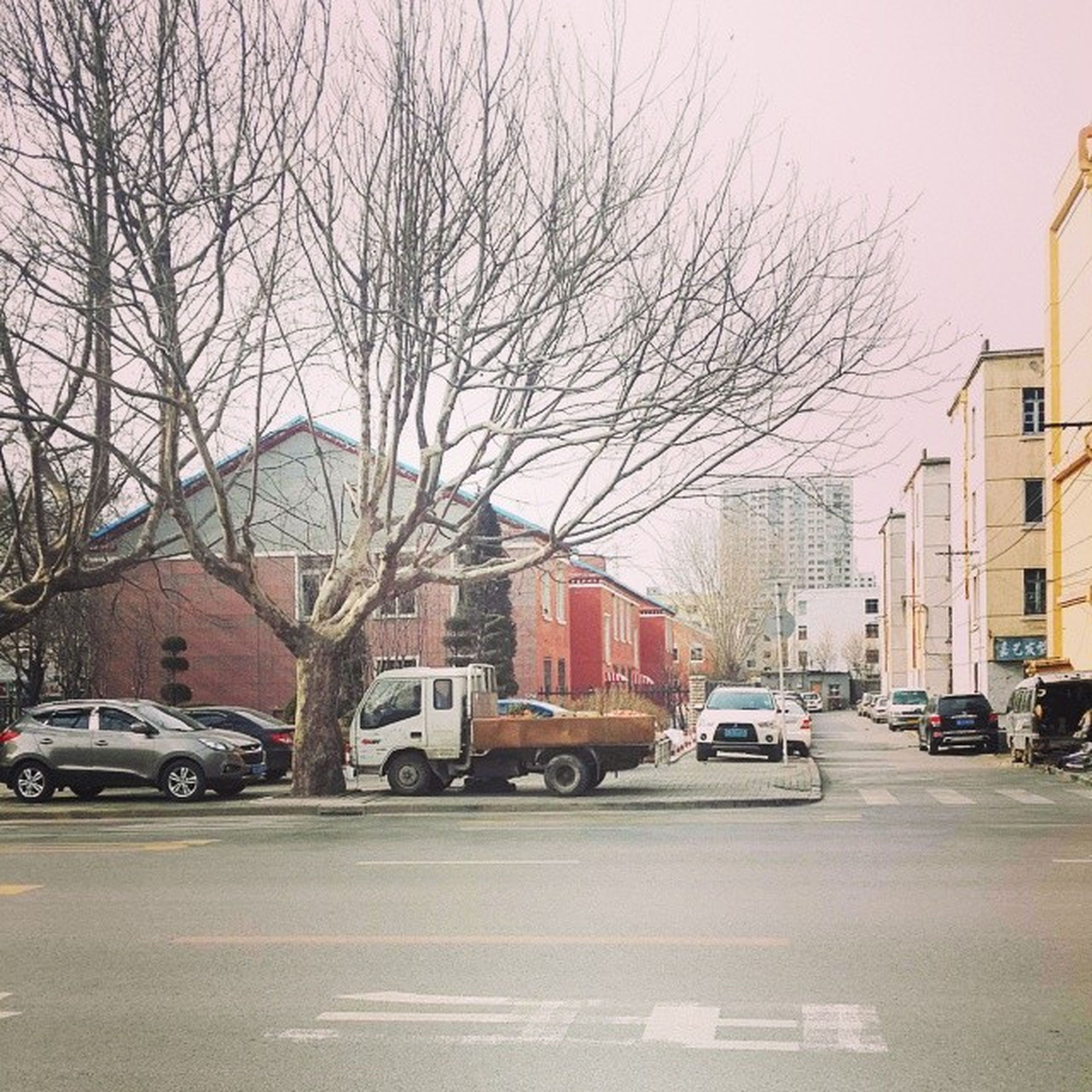 car, transportation, land vehicle, building exterior, architecture, mode of transport, built structure, street, road, city, bare tree, city street, road marking, traffic, tree, sky, parking, city life, the way forward, vehicle