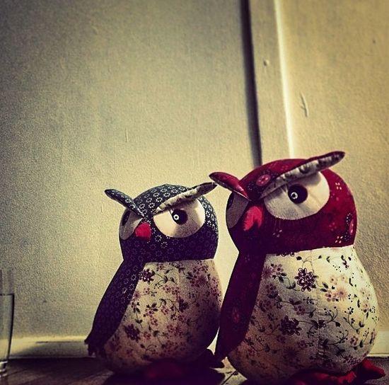 Owls Parliament Of Owls Creepy