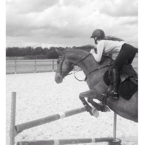 Horse Riding Black & White Animals