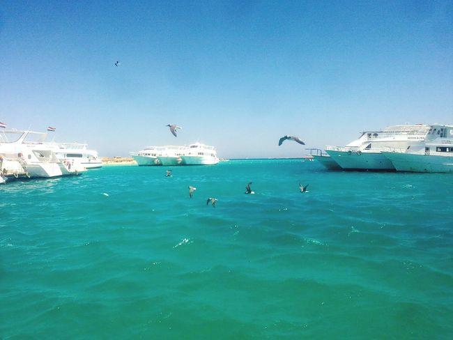Hurghada 🌊🌊