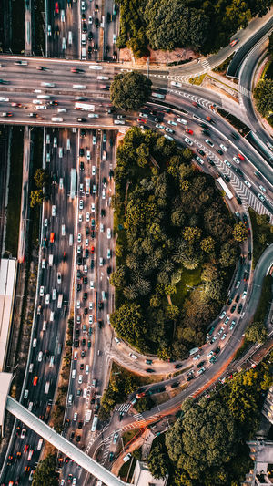 Directly above shot of traffic on highways by forest