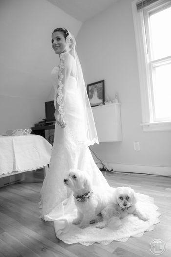 Wedding Newyork Wedding Photography Nikon